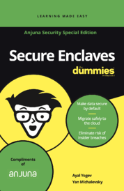 secureencalvesfordummies-cover